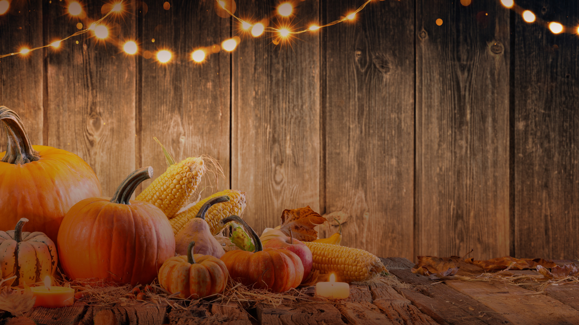 Thanksgiving2019Promo01-noText